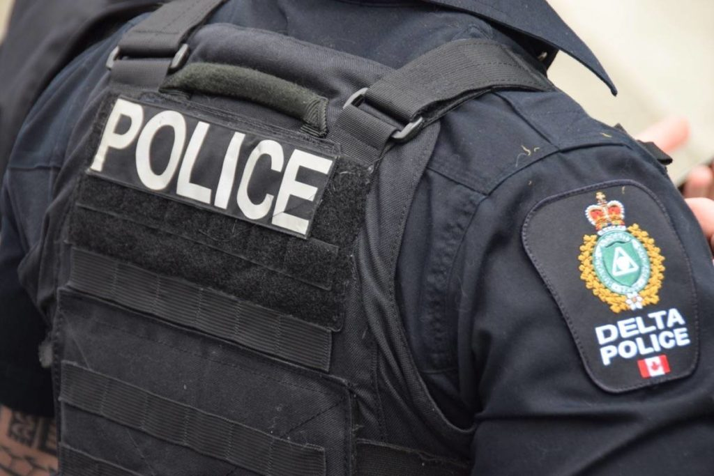 Man pleads guilty to stabbing woman, off-duty cop outside North Delta elementary school - Maple Ridge News