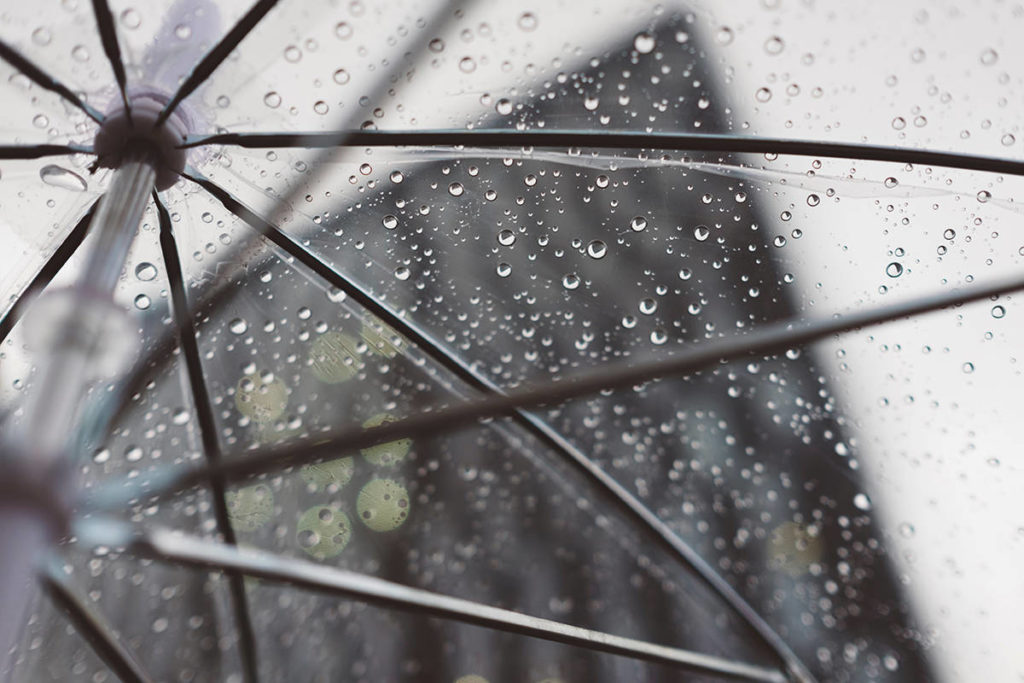 WEATHER: Showers in the forecast for Ridge Meadows - Maple Ridge News