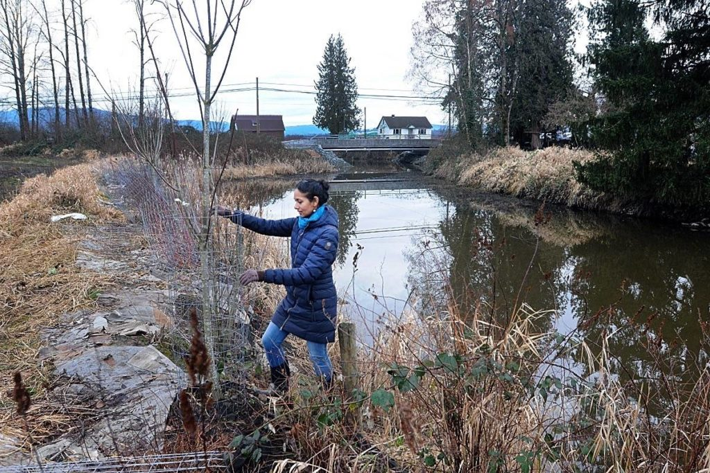 Socially distanced shoreline cleanup coming - Maple Ridge News