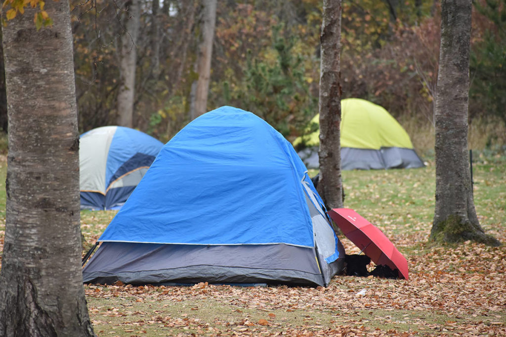 'It looked like Woodstock': More than 85 tents pitched in Peace Arch State Park Sunday - Maple Ridge News