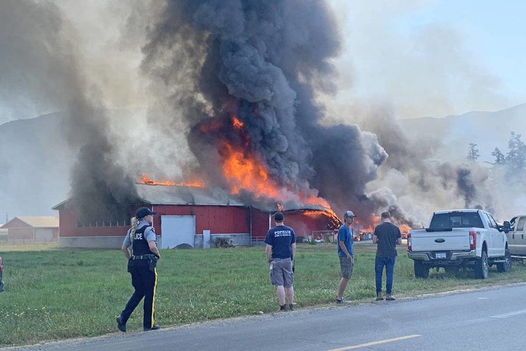 VIDEO: Chicken barn destroyed in large fire on Chilliwack property; 2nd blaze since 2020 - Maple Ridge News